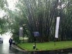 bambu-raksasa_20170519_175948.jpg