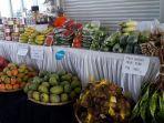 bazar-buah-dan-sayuran-urban-tani-2019.jpg