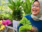 bupati-bogor-ade-yasin-mengunjungi-petani-tanaman-hias231020203.jpg
