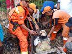 evakuasi-buaya-di-cipayung-2_20180710_073454.jpg
