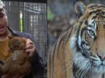 irfan-hakim-ungkap-bahwa-ada-bank-sperma-harimau-sumatera-di-taman-safari-indonesia.jpg