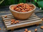 kacang-almond-banyak-mengandung-nutrisi-dan-rendah-karbohidrat.jpg