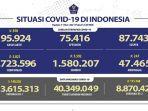 kasus-covid-19-di-indonesia-per-11-mei-2021.jpg