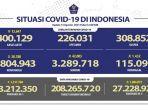 kasus-covid-19-di-indonesia-per-13-agustus-2021.jpg