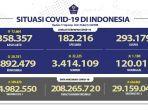 kasus-covid-19-di-indonesia-per-17-agustus-2021.jpg