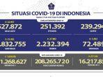 kasus-covid-19-di-indonesia-per-17-juni-2021.jpg