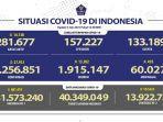 kasus-covid-19-di-indonesia-per-3-juli-2021.jpg
