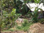 lokasi-tambang-emas-di-desa-bangbayang-sumedang.jpg