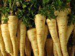parsley-roots1.jpg