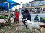 pedagang-hewan-kurban-membuat-kandang-semi-permanen-di-sisi-jalan-raya-seperti-jalan-raya-bojonggede.jpg