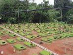 pemakaman-khusus-jenazah-covid-di-tpu-jombang.jpg