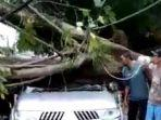peristiwa-pohon-tumbang-yang-menimpa-mobil-pajero-sport-b1257-elr.jpg