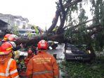 pohon-tumbang-di-duren-sawit-tewaskan-seorang-pengendara-mobil.jpg