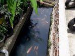 saluran-air-di-jalan-lorong-103-kelurahan-koja-kecamatan-koja-jakarta-utara.jpg