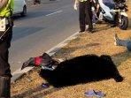 seorang-pejalan-kaki-tewas-tertabrak-motor070920201.jpg