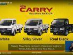 suzuki-new-carry-pick-up-hadir-dengan-tampilan-baru-dan-warna-yang-lebih-bervariasi.jpg