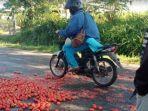 tomat-dibuang-ke-jalan.jpg
