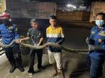 ular-sanca-sepanjang-3-meter-ditemukan-di-meruya-utara.jpg