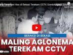 video-rekaman-cctv-aksi-pencurian-tanaman-hias-aglaonema-di-bekasi.jpg