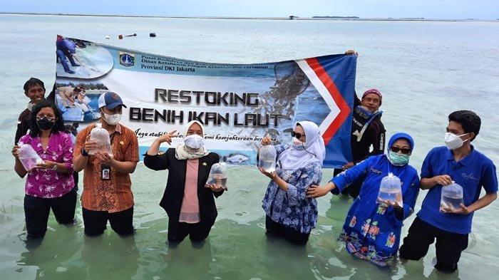 Bayi Ikan Hiu Dilepaskan di Sekitar Pulau Tidung sebagai Upaya Menjaga Ekosistem Laut