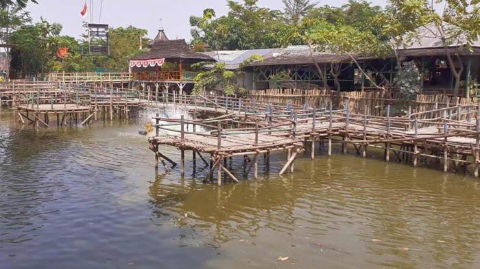 Peternakan ikan di Taman Limo Jatiwangi, yang hasilnya bisa disantap di restoran setempat.