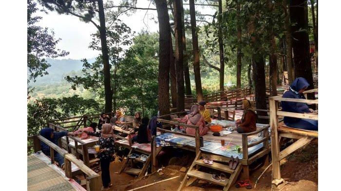 Makan-makan di bawah keteduhan pohon pinus, sambil memandang alam yang indah, membuat Gunung Pancar kebanjiran pengunjung.