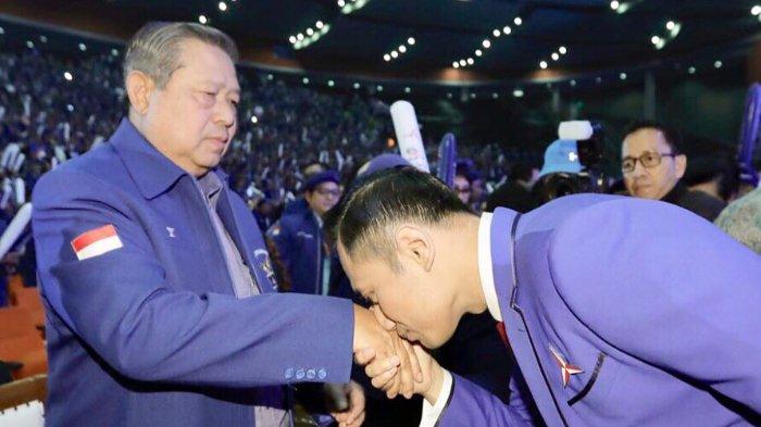 Minta AHY Segera Kumpulkan DPD dan DPC, Pengamat: Masyarakat Masih MelihatDemokratadalah SBY
