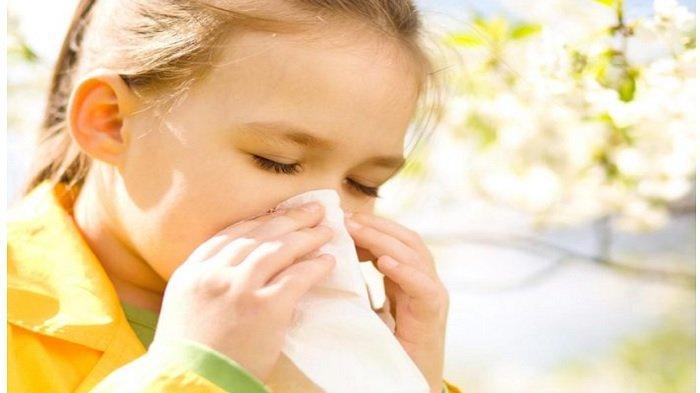 Pengobatan Rumahan bagi Anda yang Punya Alergi Debu, Coba Lima Cara Ini