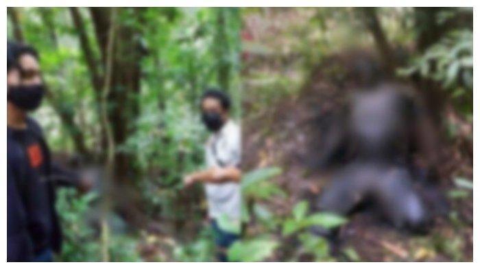 Kondisi jasad Ferry Kalesaran ditemukan nyaris membusuk di dalam hutan. Ferry merupakan terduga pelaku pembunuhan anak 12 tahun yang jasadnya ditemukan di dalam karung.