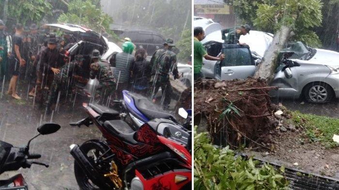 Video Puting Beliung di Kota Bogor, Sebabkan Pohon Tumbang hingga Terbangkan Atap Rumah