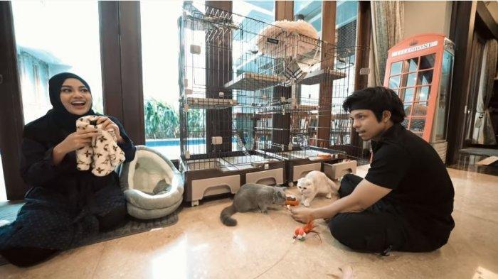 Atta Halilintar dan Aurel Hermansyah bermain dengan dua kucing peliharaannya, Rabu (21/7/2021).