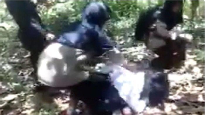 Bikin Geram! Video Persekusi Siswi SMA, Dijambak dan Dipukul di Sulawesi Tenggara