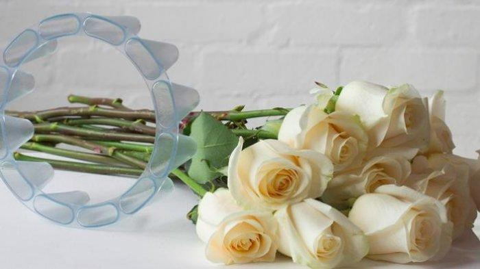 Arti 10 Warna Bunga Mawar, Kenali Perbedaannya dan Jangan sampai Salah Beli