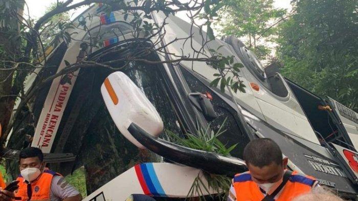 Bus Sri Padma Kencana Tak Berizin, Kemenhub Ungkap Akal-akalan Pengusaha Percantik Bus Bekas