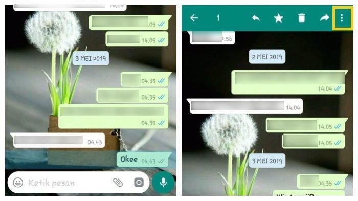 Cara Ketahui Berapa Lama Pesan WhatsApp Kamu Diabaikan dan Tak Dibalas (TribunWow.com)