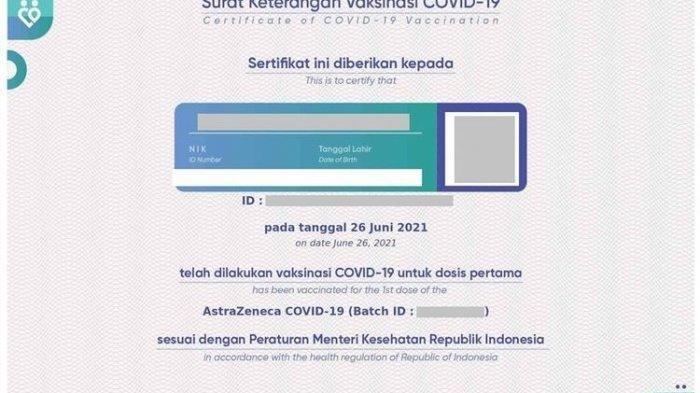 Cara Cek dan Download Sertifikat Vaksin Covid-19 ke-1 dan 2 di pedulilindungi.id, Bisa Tunggu SMS