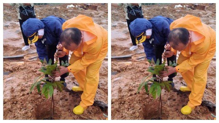 Sukabumi Masih Berpotensi Longsor, BMKG Cegah dengan Tanam Pohon Vetiver di Lokasi Bekas Bencana