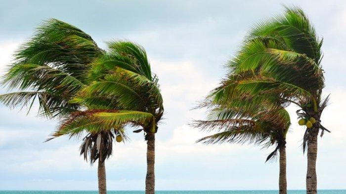 Peringatan Dini BMKG Besok, Jumat 25 Juni 2021: Jateng Waspada Hujan Petir dan Angin Kencang