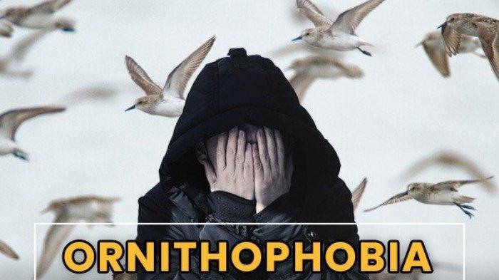 Penyebab Ornithophobia Fobia Ketakutan pada Burung, Ini Gejala yang Harus Diwaspadai