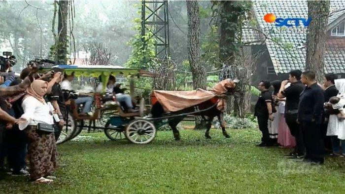 Kereta kuda dalam pernikahan Ammar Zoni dan Irish Bella.