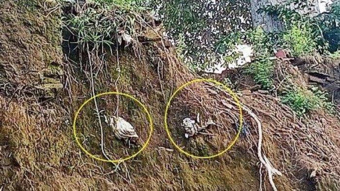 5 Jenazah Hampir Jatuh akibat Makam di Klodran Longsor, Nampak Kain Kafan Menyembul Keluar