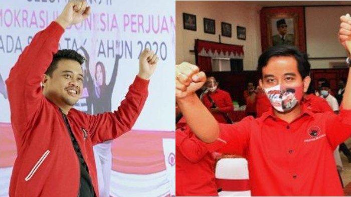 Perbandingan Harta Kekayaan Gibran dan Bobby Nasution yang Kini Jadi Wali Kota, Lihat Selisihnya
