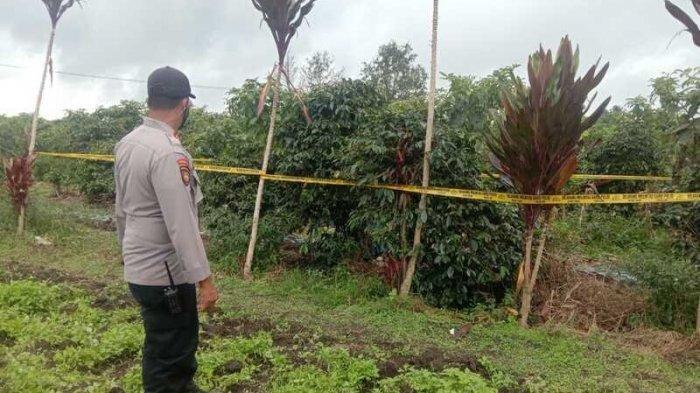 Polisi saat menunjukkan lokasi penemuan jasad Portan Tumanggor di dekat pohon kopi, Kamis (27/5/2021). Korban dibunuh oleh dua wanita yang kesal tak dipinjami uang.