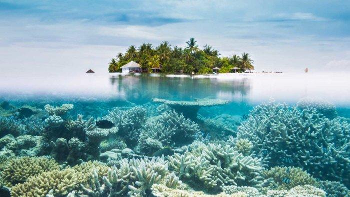 15 Pulau Terbaik di Dunia, Pulau Jawa, Bali dan Lombok Duduki 3 Peringkat Terbaik