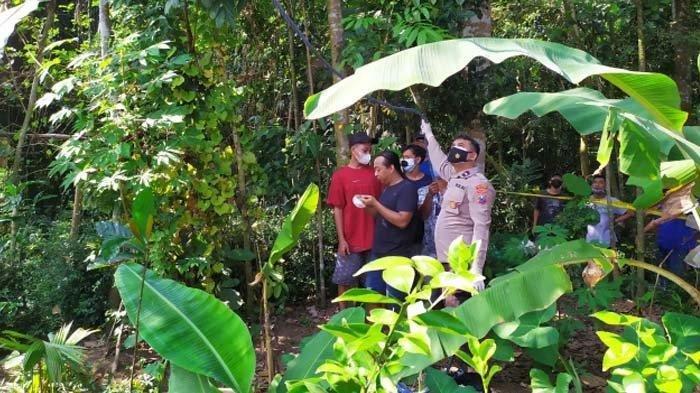 Sejumlah petugas melakukan evakuasi jasad Zakaria yang tewas tergantung di pohon rambutan, belakang rumah mertuanya, Jumat (9/7/2021).