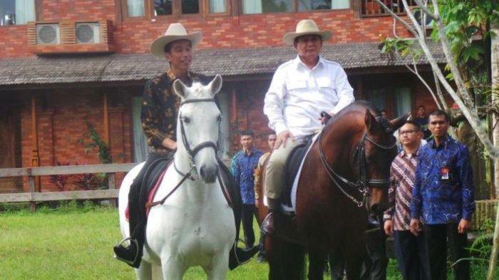 Prabowo mengajak Jokowi untuk naik kuda di kediamannya di Hambalang, Bogor, pada 31 Oktober 2016 lalu.