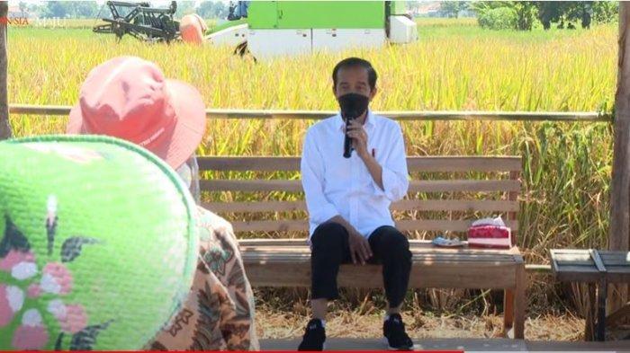 Presiden RI Joko Widodo (Jokowi) berdialog dengan petani di Desa Wanasari, Kecamatan Bangodua, Indramayu, Jawa Barat, pada Rabu (21/4/2021).