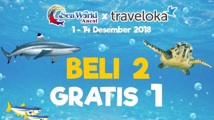 Promo Tiket Seaworld Ancol Beli 2 Gratis 1 dengan Traveloka