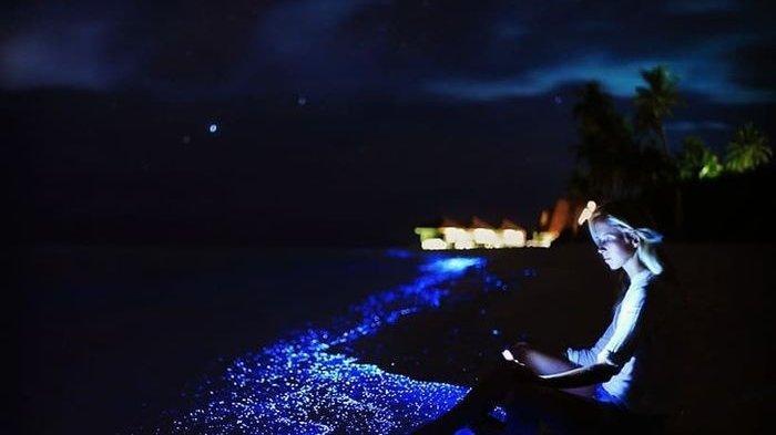 5 Destinasi di Kawasan Asia Yang Menarik untuk Kamu Kunjungi, Maladewa Tawarkan Keindahan Bawah Laut