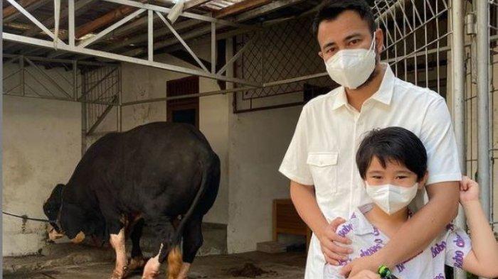 Raffi Ahmad berpose bersama Rafathar di depan sapi seberat 1,3 ton yang akan dikurbankan, Selasa (20/7/2021). Rafathar histeris saat diajak ke lokasi penyembelihan sapi.
